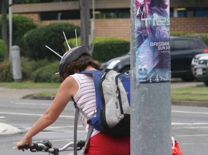 Tak przed dzierzbowronami bronią się rowerzyści (Tony Wills/Wikipedia (CC BY-SA 3.0))