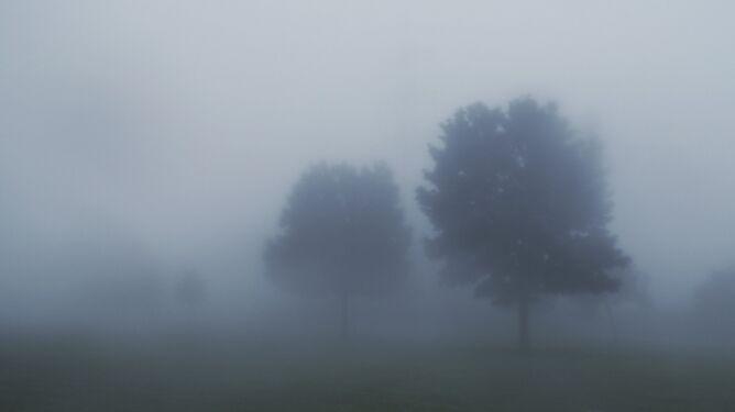 Mgła - jak powstaje? Co to jest? Czym się różni od zamglenia?