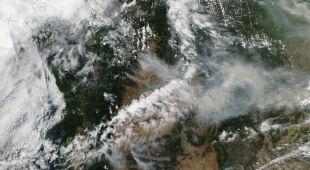 Kalifornia walczy z pożarem